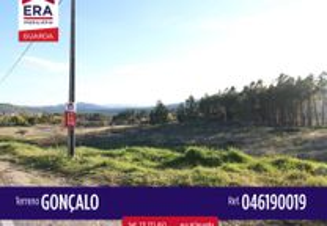 046190019 - Terreno em Gonçalo