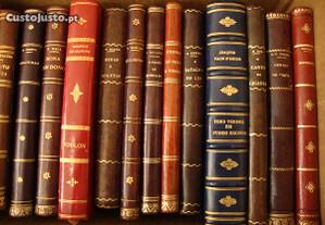 Livros, livros e mais livros...