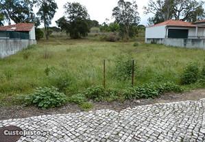 Terreno p/ moradia isolada - Condeixa (Permuta)